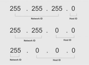 network dan host id